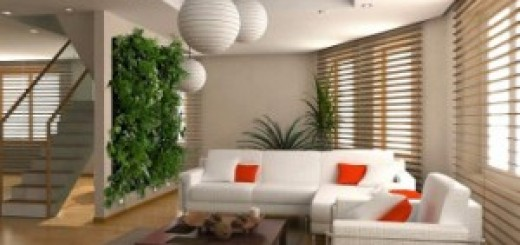 mur-vegetal-interieur-300x225
