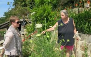 béthisy saint pierre jardinage